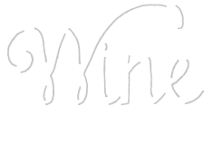 Wine for Teachers